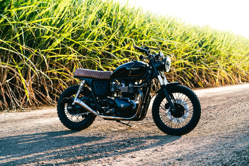 Triumph Scrambler 10 From A Standard T100 To An Off Road Monster
