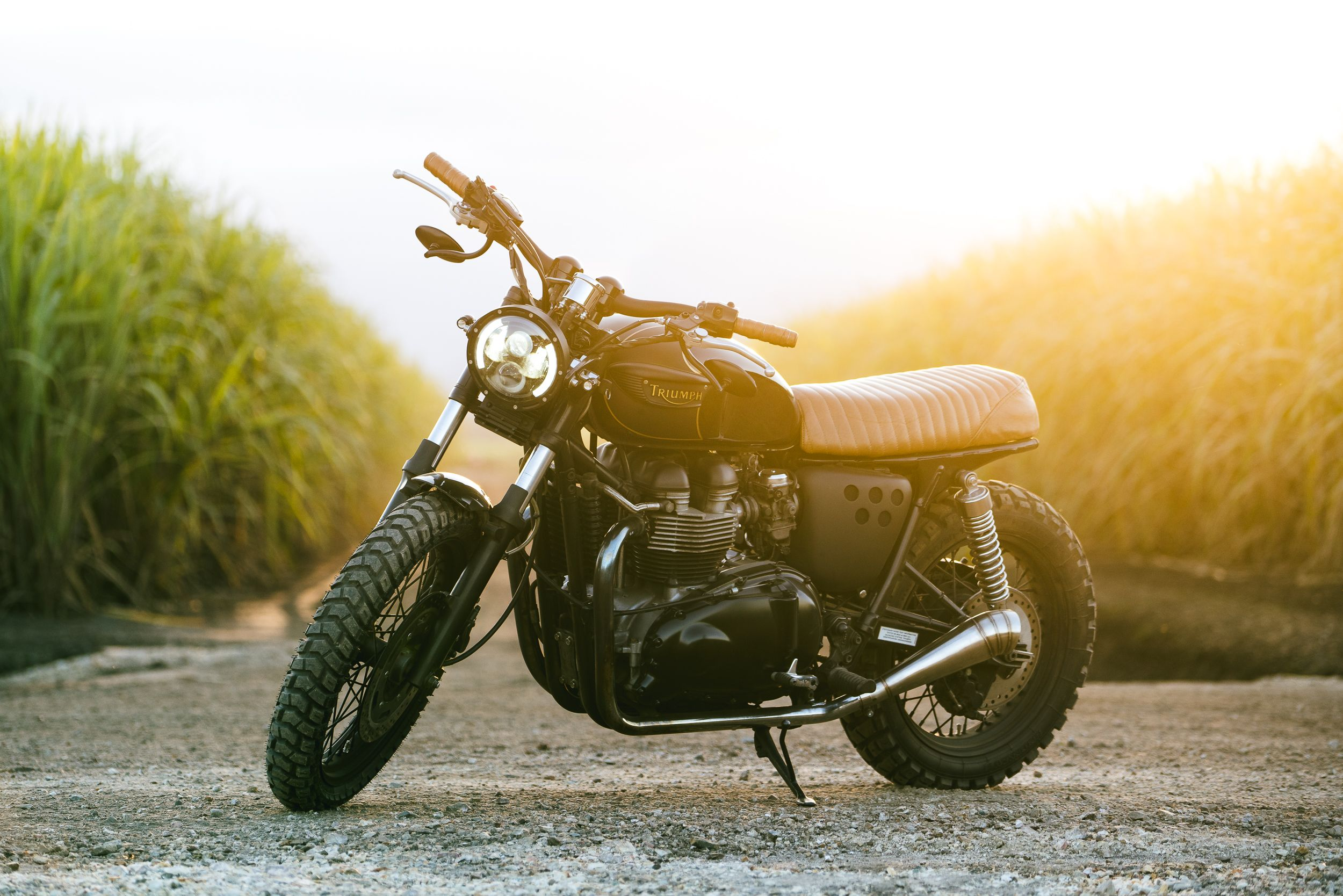 triumph-cafe-racer-field-2